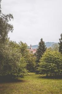 Blick auf Zierenberg